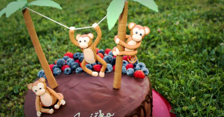 Opice pre Aničku